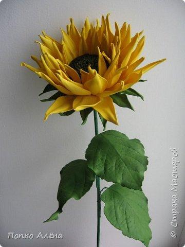 Здравствуйте, Мастера и мастерицы! Представляю Вам цветы из фоамирана.  Одуванчики. фото 6