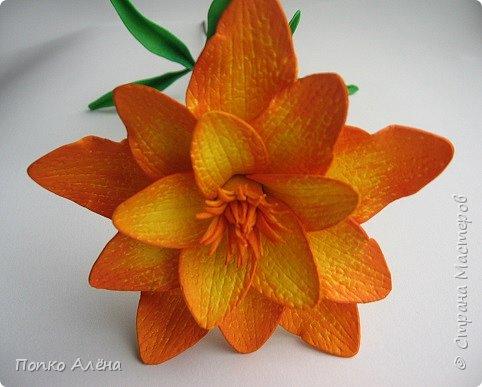 Здравствуйте, Мастера и мастерицы! Представляю Вам цветы из фоамирана.  Одуванчики. фото 4
