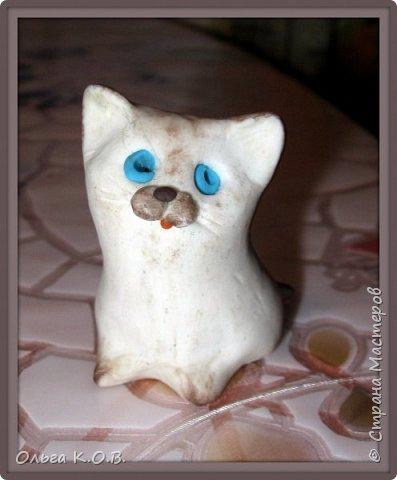 Котик Максик  фото 8