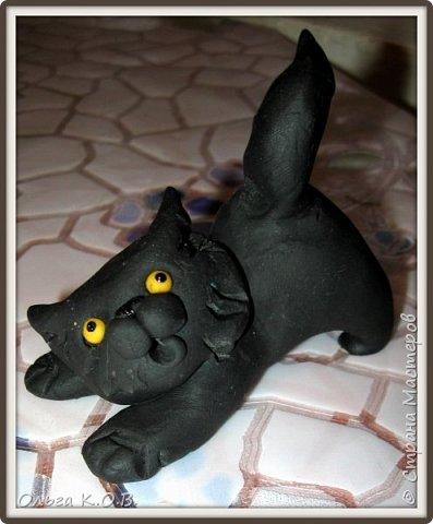 Котик Максик  фото 1