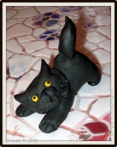 Котик Максик  фото 3