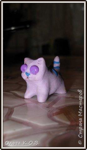 Котик Максик  фото 17