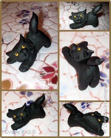 Котик Максик  фото 2
