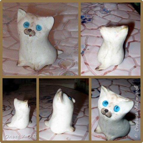 Котик Максик  фото 9