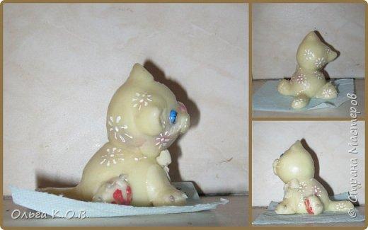 Котик Максик  фото 15
