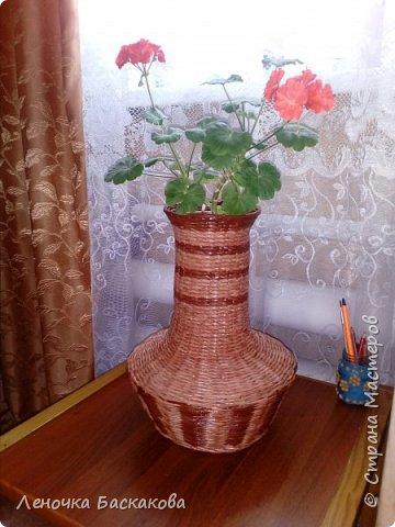 вот такую вазу сплела ,спасибо за мастер-класс http://stranamasterov.ru/blog/178915