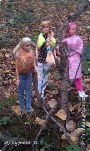 Всем привет. Сегодня мы всей  семьёй приехали в лес. Ну и кукол взяли. Они очень здорово отдохнули. Сейчас я вам всё покажу. фото 7