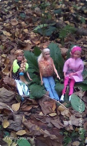 Всем привет. Сегодня мы всей  семьёй приехали в лес. Ну и кукол взяли. Они очень здорово отдохнули. Сейчас я вам всё покажу. фото 10