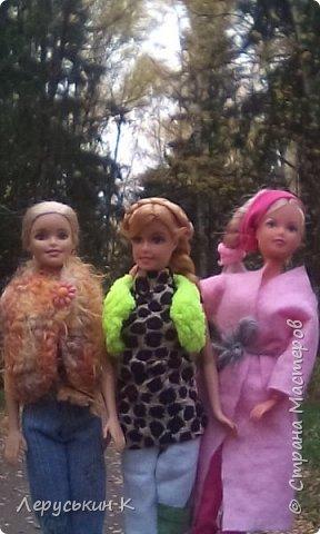 Всем привет. Сегодня мы всей  семьёй приехали в лес. Ну и кукол взяли. Они очень здорово отдохнули. Сейчас я вам всё покажу. фото 11