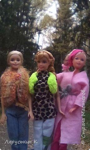 Всем привет. Сегодня мы всей  семьёй приехали в лес. Ну и кукол взяли. Они очень здорово отдохнули. Сейчас я вам всё покажу. фото 8