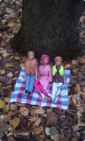 Всем привет. Сегодня мы всей  семьёй приехали в лес. Ну и кукол взяли. Они очень здорово отдохнули. Сейчас я вам всё покажу. фото 2