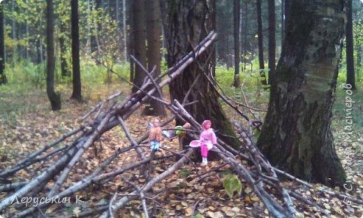 Всем привет. Сегодня мы всей  семьёй приехали в лес. Ну и кукол взяли. Они очень здорово отдохнули. Сейчас я вам всё покажу. фото 6