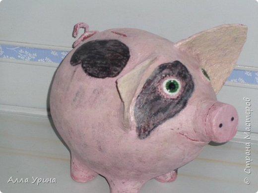 Копилка для Димочки.Просил не свинью,а кабанчика,так-что это свин. фото 1