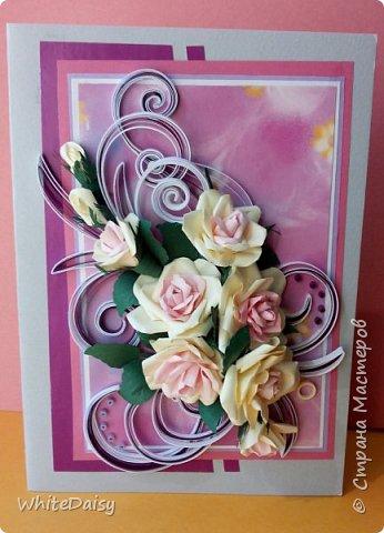 Розы фото 3