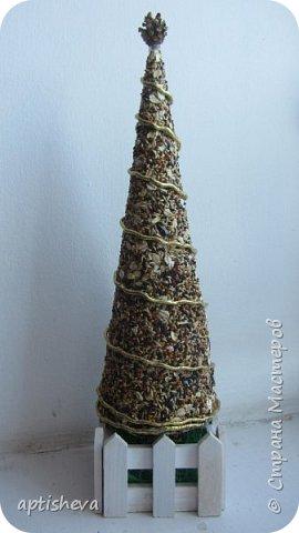 Первый вариант ёлочки сделан из картона (как основа) и приклеенных семян на клей ПВА (Семена - это купленный корм для птичек), можно, конечно и самим сделать смесь. Ёлка украшена шишечкой и золотой тесьмой. Подставка - деревянный ящичек, заполненный сизалью. фото 1