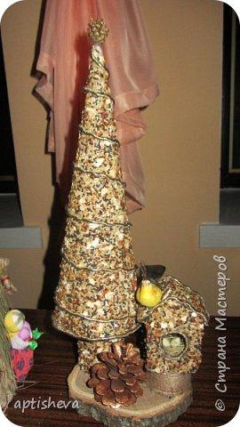 Первый вариант ёлочки сделан из картона (как основа) и приклеенных семян на клей ПВА (Семена - это купленный корм для птичек), можно, конечно и самим сделать смесь. Ёлка украшена шишечкой и золотой тесьмой. Подставка - деревянный ящичек, заполненный сизалью. фото 2