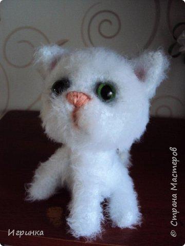 """""""А у нас сегодня кошка родила вчера котят..."""" Здравствуйте дорогие мастера и мастерицы. Лучший отдых для меня - это вязание игрушек. И в последнее время нашло на меня кошачье настроение. Посмотрите, что у меня народилось фото 6"""