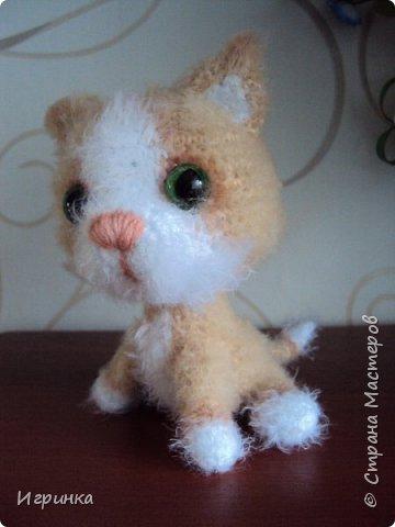 """""""А у нас сегодня кошка родила вчера котят..."""" Здравствуйте дорогие мастера и мастерицы. Лучший отдых для меня - это вязание игрушек. И в последнее время нашло на меня кошачье настроение. Посмотрите, что у меня народилось фото 5"""