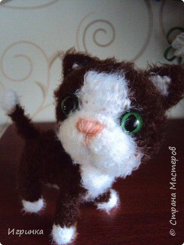 """""""А у нас сегодня кошка родила вчера котят..."""" Здравствуйте дорогие мастера и мастерицы. Лучший отдых для меня - это вязание игрушек. И в последнее время нашло на меня кошачье настроение. Посмотрите, что у меня народилось фото 8"""
