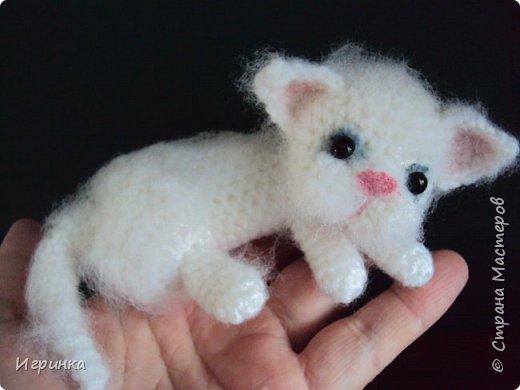 """""""А у нас сегодня кошка родила вчера котят..."""" Здравствуйте дорогие мастера и мастерицы. Лучший отдых для меня - это вязание игрушек. И в последнее время нашло на меня кошачье настроение. Посмотрите, что у меня народилось фото 10"""