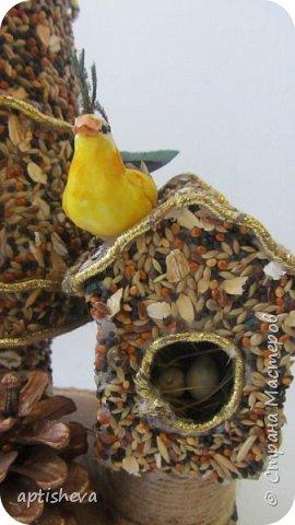 Первый вариант ёлочки сделан из картона (как основа) и приклеенных семян на клей ПВА (Семена - это купленный корм для птичек), можно, конечно и самим сделать смесь. Ёлка украшена шишечкой и золотой тесьмой. Подставка - деревянный ящичек, заполненный сизалью. фото 3