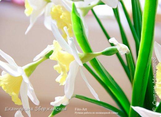 Нарциссы из холодного фарфора. фото 10