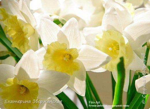 Нарциссы из холодного фарфора. фото 13