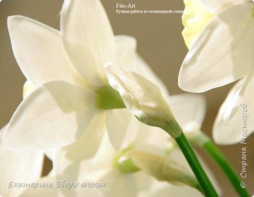 Нарциссы из холодного фарфора. фото 14
