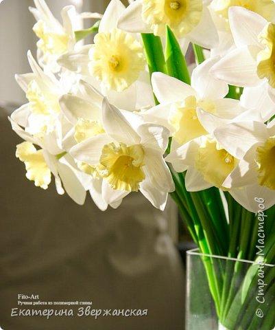 Нарциссы из холодного фарфора. фото 17