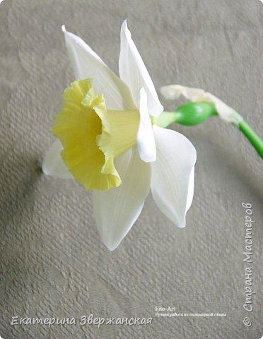 Нарциссы из холодного фарфора. фото 20