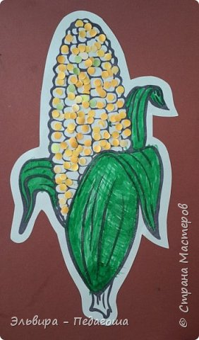 А сегодня мои первоклашки собирали кукурузу. фото 4