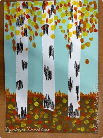 Осенние берёзки фото 9