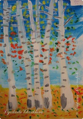 Осенние берёзки фото 4