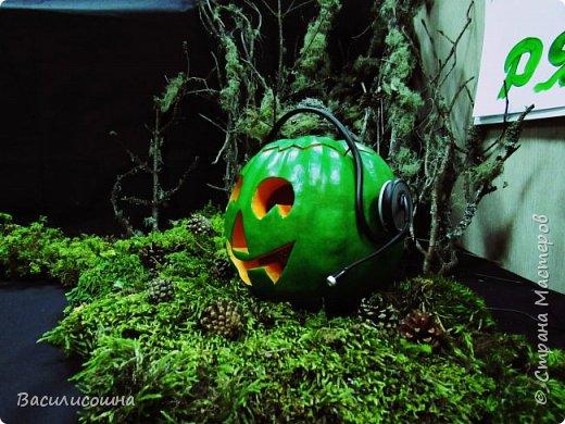Хеллоуин на работе удался.Вильма отправилась туда пошалить)))) фото 3