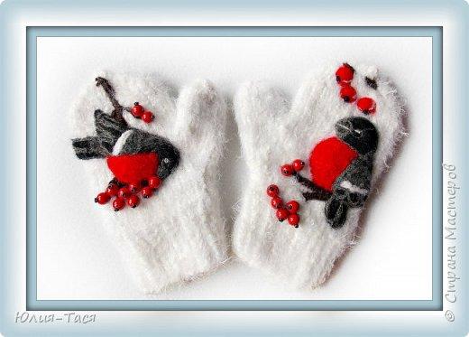 Первые малышковые рукавички со снегирями
