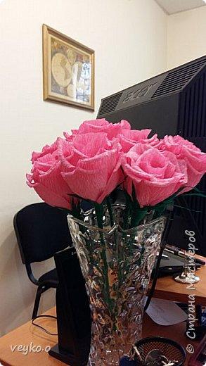 Розовые розы! фото 8