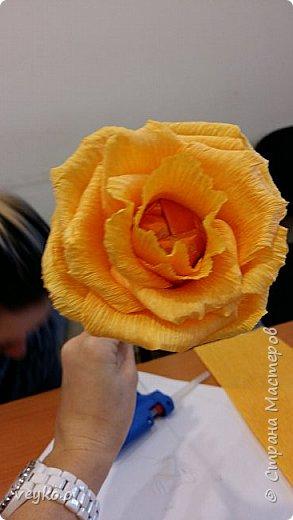 Розовые розы! фото 7