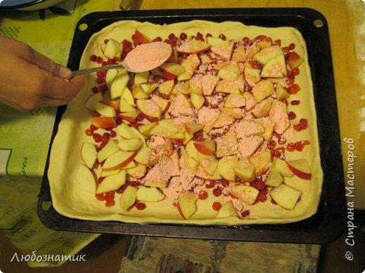 Добрый вечер! Хочу поделиться с вами опытом выпекания яблочно-калинового пирога. Рецепт теста из которого я пеку пироги - универсальный и проверен многократно. Начинку кладу любую. Итак начнём! Для теста:  0,5 л любого кефира; 200 г маргарина (растопить); 1 чайная ложка без верха разрыхлитель теста (или 0,5 ч. л.соды +1 ч. л. уксуса =гасить); соль по вкусу и мука. Замесить крутое тесто и дать постоять 30 - 40 мин. Из этого количества теста получается два больших пирога.                      фото 9