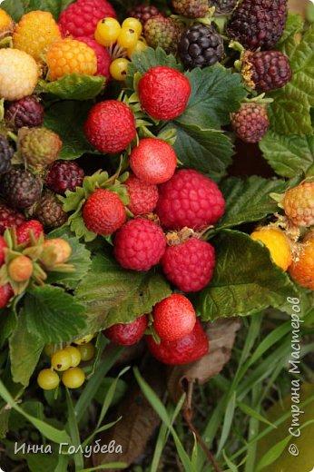Девочки,привет! Налепила вот таких ягодок, часть из них делала на заказ и добавила разнообразия,заодно немного пофоткала процесс тонировки. фото 23