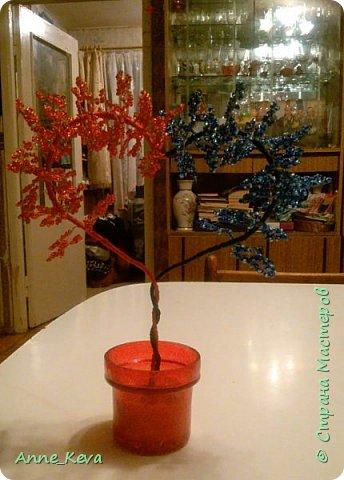 Насмотрелась  я на многочисленные уроки сердечных деревьев, особенно заворожил меня мастер-класс Олисандры (http://stranamasterov.ru/node/150505) и решилась на свой первый сердечный эксперимент. Бисер взяла двух оттенков красного и двух - синего (правда в синем больше заметно было переход, чем в красном, тут вышла промашка). Для подставки разобрала старый подсвечник. И вот такая красота получилась в итоге. фото 1