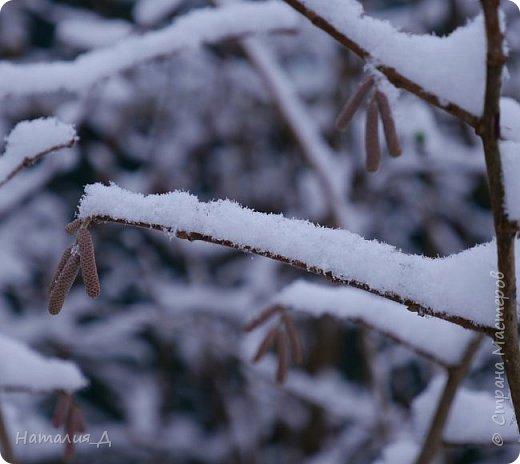 Доброго всем времени суток! Вот и пришло это чудо - СНЕГОПАД..... Первый настоящий, как в сказке, тихо шуршащий по куртке и воздушной нежностью укутывающий засыпающую природу....  Я очарована им с детства...... Эта любовь - любовь к снегопаду - пронесена через теплые зимы, похожие на осень, согрета в мечтах о скорой встрече и......  вот, долгожданная встреча состоялась - и я пытаюсь запечатлеть эту любовь в своих фотографиях..... как получается - судить Вам, жители Страны Мастеров... фото 2