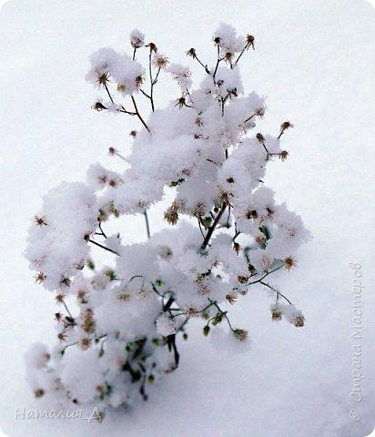 Доброго всем времени суток! Вот и пришло это чудо - СНЕГОПАД..... Первый настоящий, как в сказке, тихо шуршащий по куртке и воздушной нежностью укутывающий засыпающую природу....  Я очарована им с детства...... Эта любовь - любовь к снегопаду - пронесена через теплые зимы, похожие на осень, согрета в мечтах о скорой встрече и......  вот, долгожданная встреча состоялась - и я пытаюсь запечатлеть эту любовь в своих фотографиях..... как получается - судить Вам, жители Страны Мастеров... фото 10