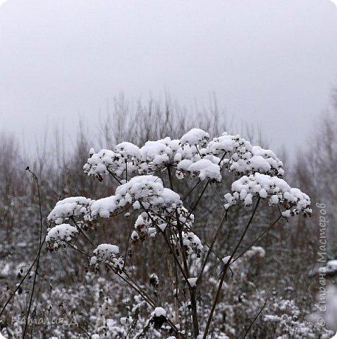 Доброго всем времени суток! Вот и пришло это чудо - СНЕГОПАД..... Первый настоящий, как в сказке, тихо шуршащий по куртке и воздушной нежностью укутывающий засыпающую природу....  Я очарована им с детства...... Эта любовь - любовь к снегопаду - пронесена через теплые зимы, похожие на осень, согрета в мечтах о скорой встрече и......  вот, долгожданная встреча состоялась - и я пытаюсь запечатлеть эту любовь в своих фотографиях..... как получается - судить Вам, жители Страны Мастеров... фото 14