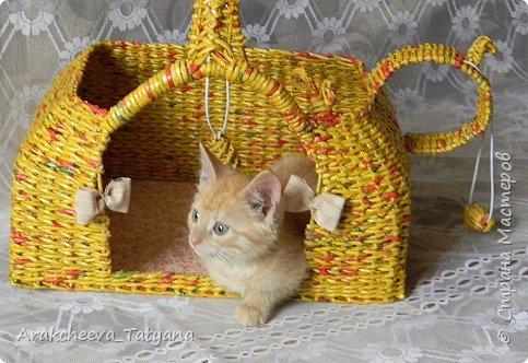 Добрый вечер  уважаемые жители Страны мастеров!  Сегодня хочу показать вам изделие, которое сплелось у меня  в связи с появление в нашем доме  нового жильца - котенка  Симы. Вот такой игровой домик  я решила сделать для него. фото 2