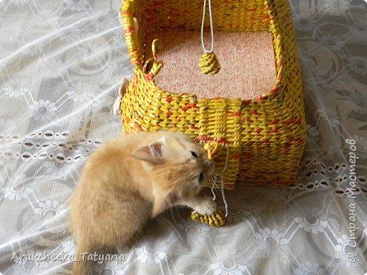 Добрый вечер  уважаемые жители Страны мастеров!  Сегодня хочу показать вам изделие, которое сплелось у меня  в связи с появление в нашем доме  нового жильца - котенка  Симы. Вот такой игровой домик  я решила сделать для него. фото 9