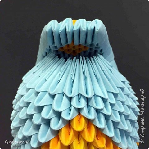 Попугаи. фото 45