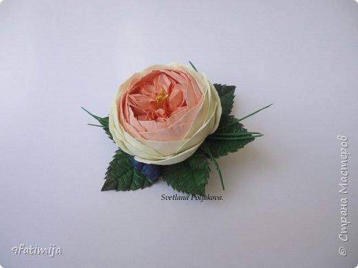 Пионовидная роза.