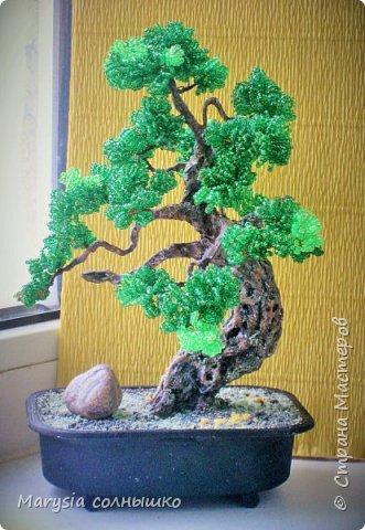 Бисерный бонсай. фото 3