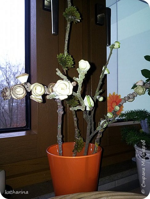 Люблю пробовать всё новое. Увидав в стране деревянные цветы , тут же настрогала себе кучу. http://stranamasterov.ru/node/234352 Ну а тут гранат на глаза попался , купили витамин и забыли. Он месяца 4 лежал , засох и стал красивый.....Было это год назад , гранат живёт до сих пор без изменений . Одно слово - витамин ! фото 2