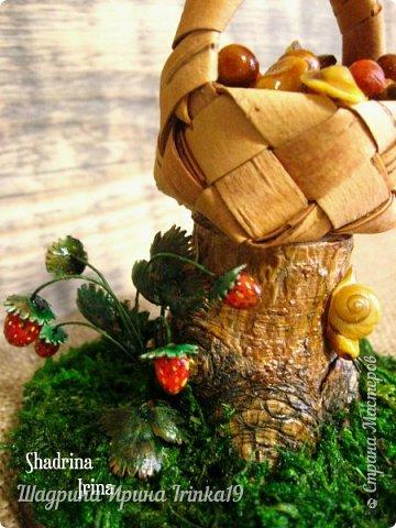 Здравствуйте, мои любимые жители Страны Мастеров!!! Родилась у меня вот такая миниатюрочка, которая помещается на моей ладошке!На пенёчке стоит плетёная корзиночка с грибами, рядом созрела лесная земляничка, если присмотримся, то увидим, что по пеньку ползёт улитка! В миниатюре использовала свои любимые природные материалы: мох, береста, сосновый пенёк, ракушка, листочки землянички-чешуйки шишек, ягодки и грибочки - холодный фарфор! Высота миниатюры 10см, размер подставки в диаметре 12см! фото 4